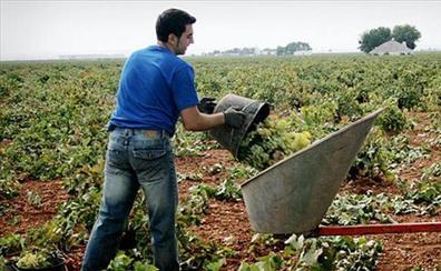 La Junta aumenta en 30 millones de euros las ayudas para la incorporación de jóvenes a la actividad agraria