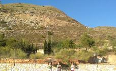 Talleres deportivos en Chercos y Bayarque