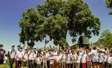 Cosentino fomenta la biodiversidad en Serón con el proyecto 'Care For the Planet'
