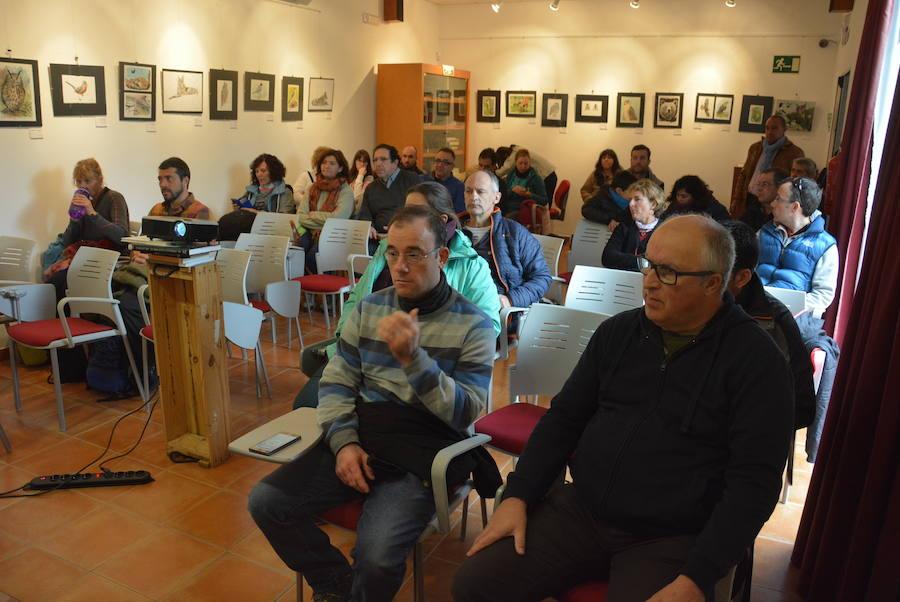 La población de lince ibérico sigue creciendo pese a las últimas fortuitas