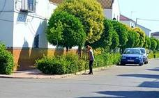 La autonomía de Los Villares-San José de Escobar se hace esperar