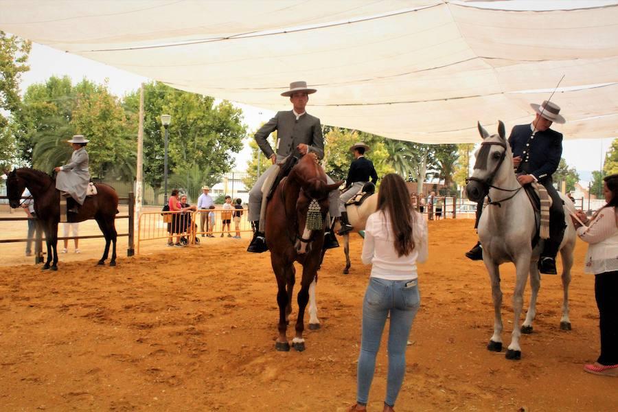 El caballo, fiel a su cita en grandes eventos