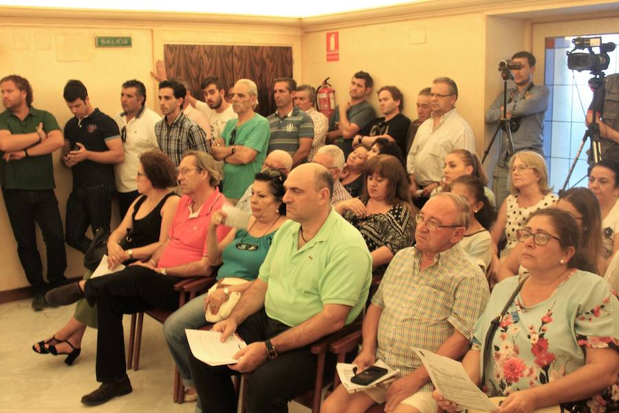 La Corporación pide paliar lagunas sanitarias en la ciudad de Andújar