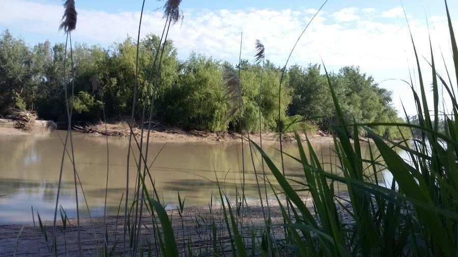 El Gobierno central va a convocar la Mesa de las Inundaciones