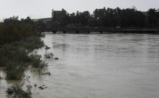 El colectivo Ameco dice que no se aborda con profundidad el asunto de las inundaciones en Andújar