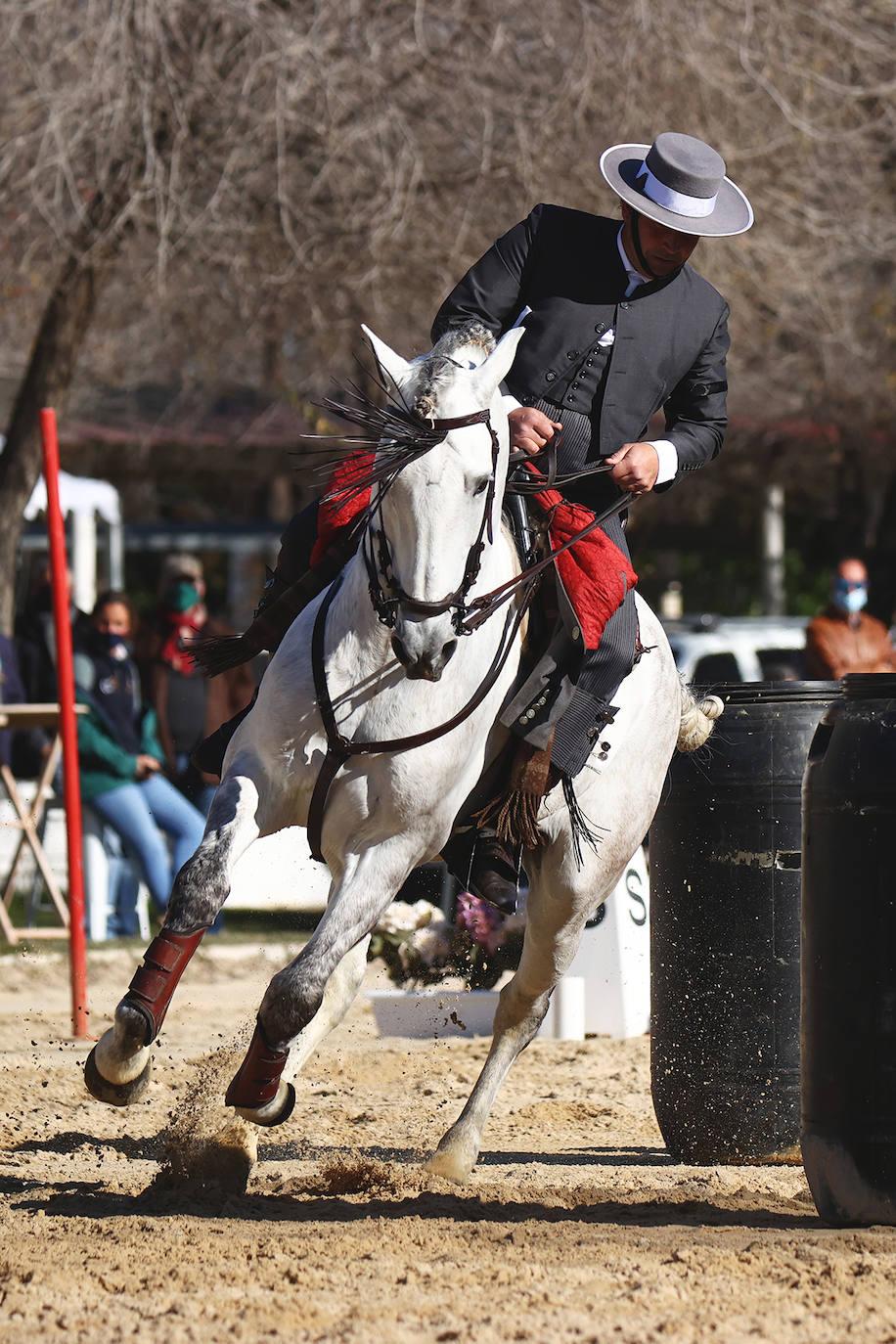 Anducab´21 contará con una nueva disciplina de Equitación de Trabajo como prueba asociada al Concurso Morfológico