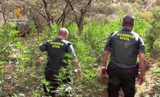 La Guardia Civil detiene a tres personas como presuntas autoras de un delito contra la salud pública