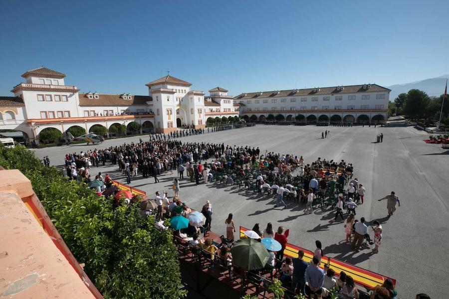 Multitudinaria Jura de Bandera en Armilla