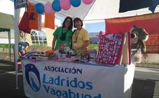 Armilla celebra la primera Gran Recogida Solidaria de Alimentos para perros y gatos