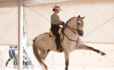 Fermasa dice que «no puede garantizar» la celebración de la feria del caballo por la falta de respuesta de la Junta de Andalucía