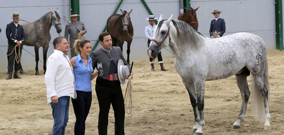 La ganadería José Fajardo Sánchez y SR4 se llevan los premios al campeón y campeona de la raza