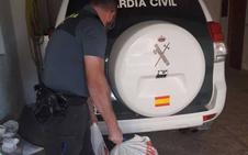Detenidos tres extranjeros residentes en Baza por hurto de almendras