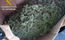 Interceptado en la A-92 N un vehículo con 12 kilos de cogollos de marihuana