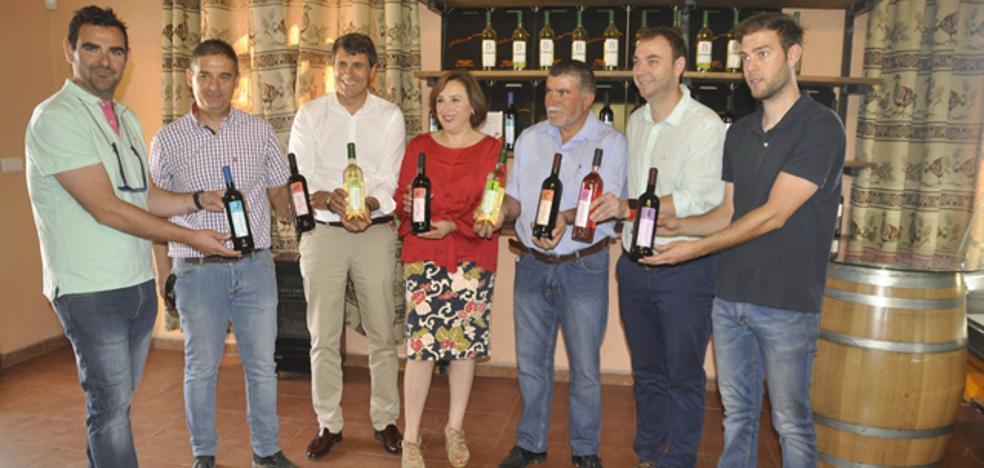 Sigue aumentando la producción de vino de calidad con la Denominación de Origen de Granada