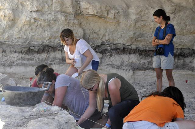 Aparece en Orce el hueso de un carnívoro de hace 1,5 millones de años