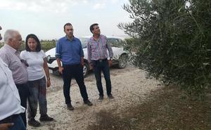 La Junta cifra en más de 16,7 millones los daños del granizo en Baza y Cúllar