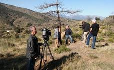 Las plagas de la Sierra de Baza hoy en 'El escarabajo verde'