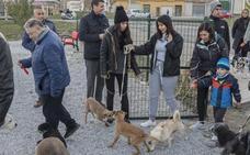 Baza ya tiene un parque canino