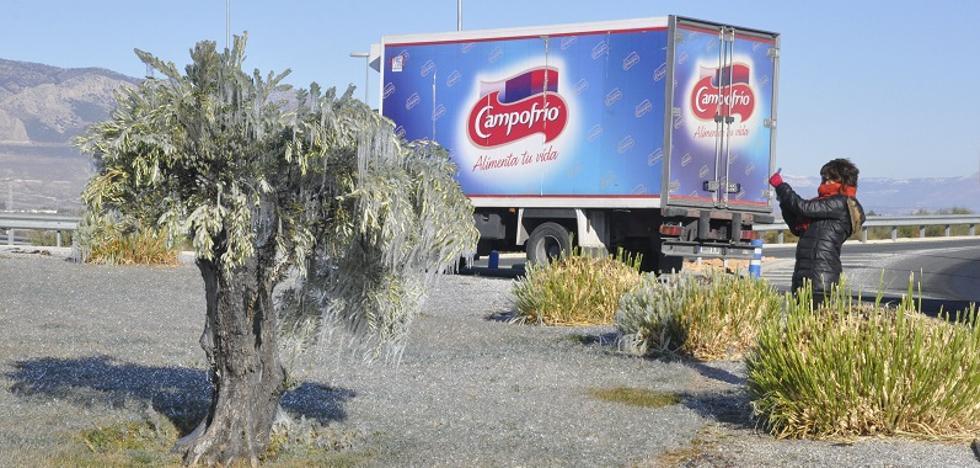 Baza fija el récord de frío en Andalucía, con 7,5 grados bajo cero