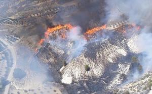 Extinguido el incendio en una ladera de monte en Cortes de Baza