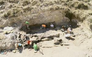 El yacimiento de Baza se destapa como un gran cementerio de mastodontes