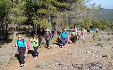 El Programa Municipal de Senderismo se estrena con una ruta por el río Andarax