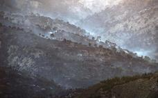 Se cumplen dos años del incendio de Quesada en el que ardieron cerca de 10.000 hectáreas