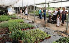 El vivero municipal realiza una jornada de puertas abiertas para mostrar su labor