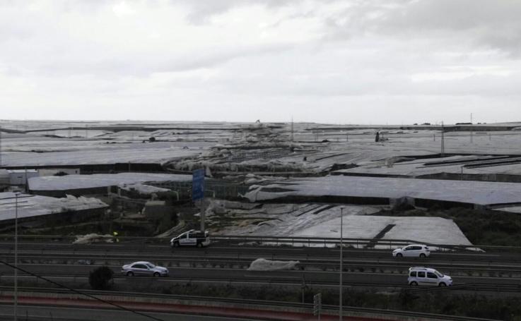 El tornado arrasa más de 150 hectáreas de invernadero en El Ejido