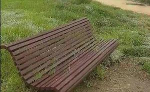 UPyD denuncia dejadez municipal en materia de limpieza en Balerma