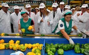 Susana Díaz anuncia que en una semana se publicará la orden para el Plan Renove de invernaderos