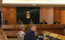 El Pleno insta a la Junta a la elaboración de un 'Plan de Choque' por la educación