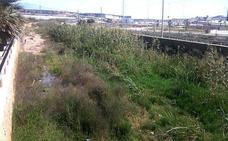 La Junta exige al Consistorio limpiar los tramos urbanos de la rambla El Sentir