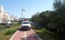 El Ayuntamiento intensifica las labores de control de mosquitos en Almerimar