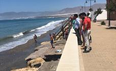 Moción de Urgencia sobre la situación de la playa de Balerma