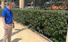 Ciudadanos denuncia la presencia masiva de ratas en el Parque Municipal