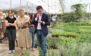 El vivero municipal abre un módulo para usuarios del taller de jardinería