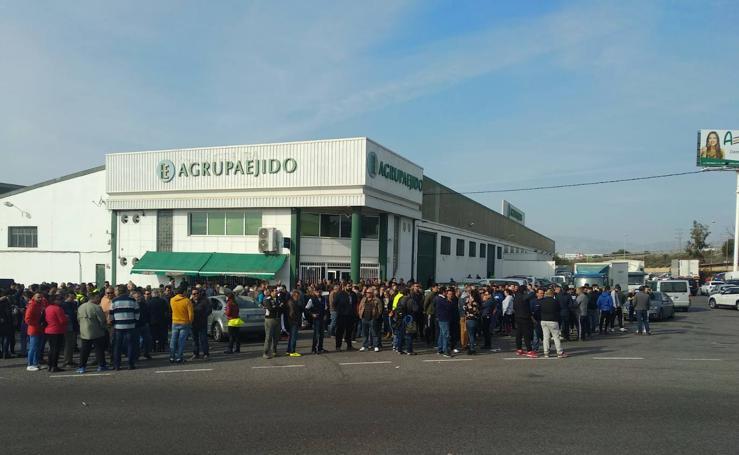 Agricultores de El Ejido contra los bajos precios