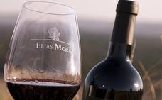 Pura uva tinta de toro en las Bodegas Elías Mora