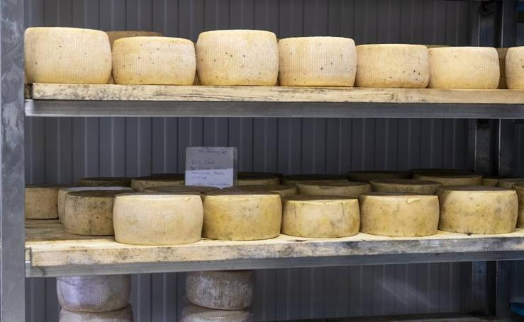 La única quesería de vaca granadina cautiva adeptos