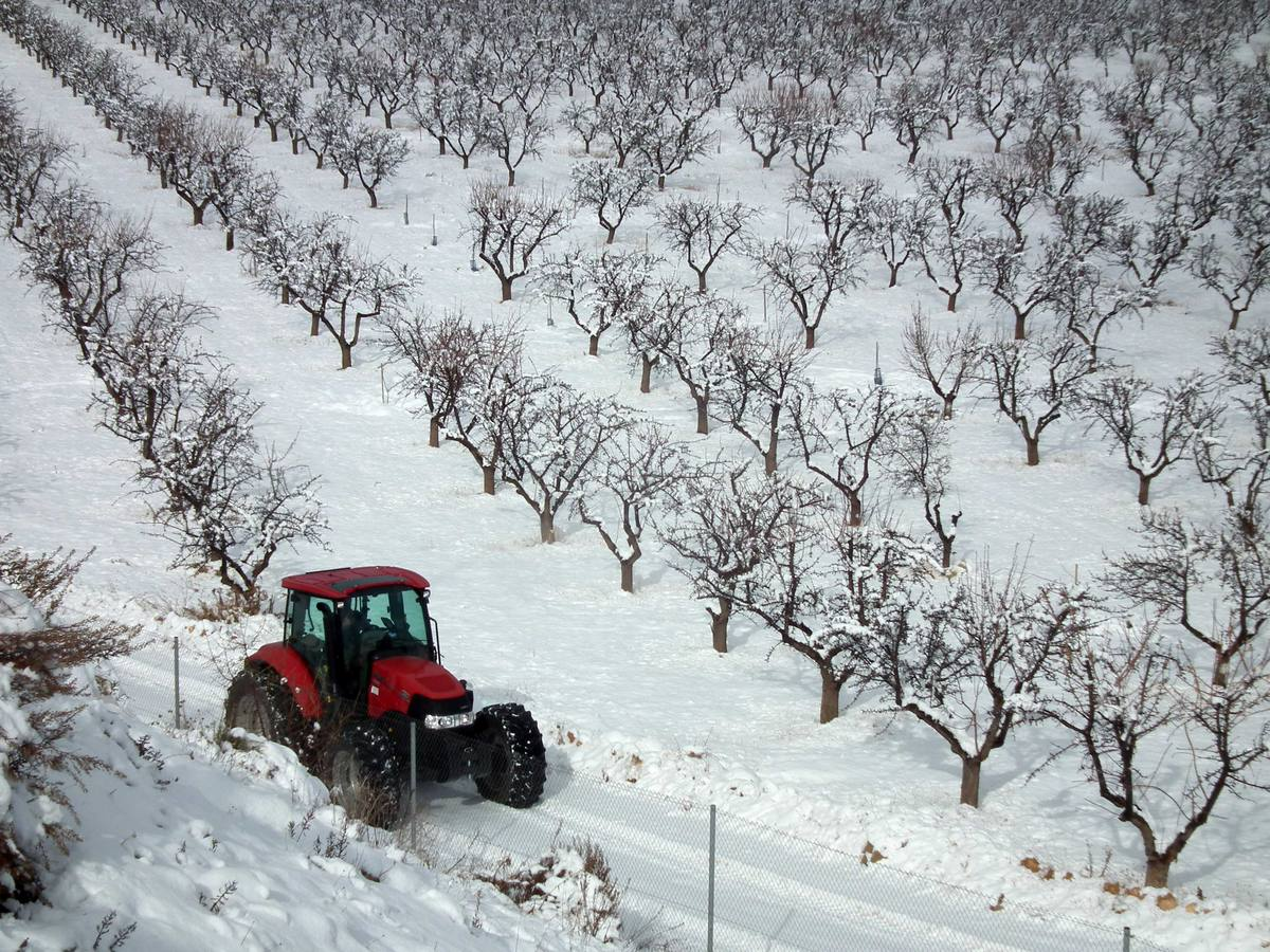 Domingo de nieve en Guadix