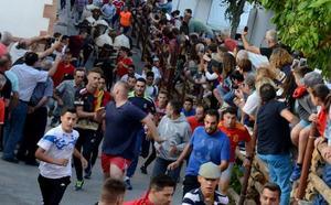 Gor vuelve a correr en sus encierros, los más antiguos de España