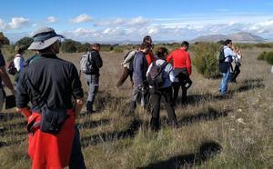 Estudian en el monte público del Cortijo Conejo la regeneración en dehesas de encinas