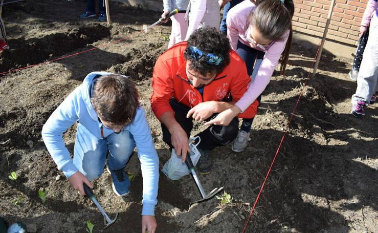 Nueva edición del Programa de Educación Ambiental del Ayuntamiento de Guadix