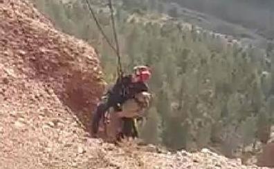 Bomberos de Guadix rescatan un perro que había caído por un precipicio en el Fin del Mundo