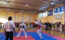 Más de 300 participantes en el XV Trofeo Ciudad de Guadix de Taekwondo