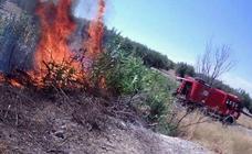 La Guardia Civil investiga a un hombre por un incendio forestal en Benalúa