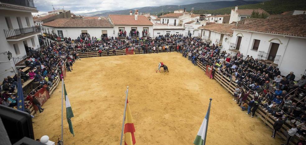 Jérez honra a su patrona con toros
