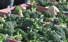 La concejalía de Salud informa sobre bulos relacionados con alimentación y COVID 19