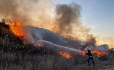Bomberos de Guadix sofocan un incendio de matorral en la carretera que une Guadix con Purullena